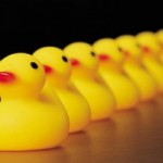 Lining up your ducks: successfully embedding learning and change in your organisation
